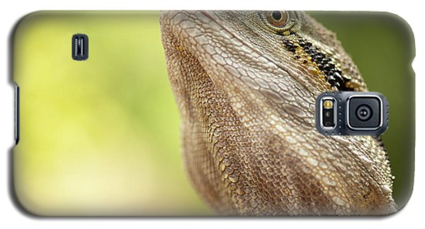 Water Dragon. Galaxy S5 Case