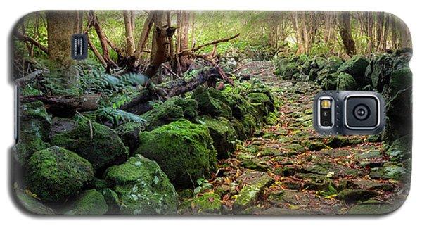 Waterfall Path Galaxy S5 Case