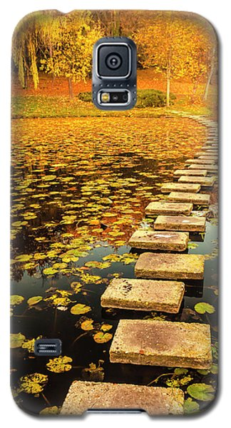 Way In The Lake Galaxy S5 Case