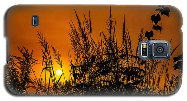 Weeds Galaxy S5 Case