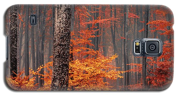Welcome To Orange Forest Galaxy S5 Case