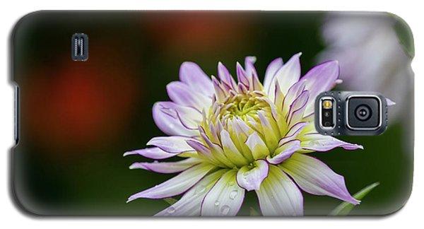 Wet Petals Dahlia Galaxy S5 Case