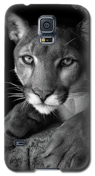 What Now Galaxy S5 Case