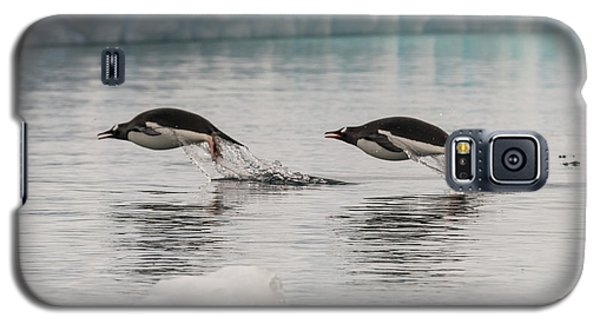 When Penguins Fly Galaxy S5 Case