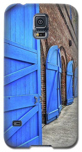 Which Blue Door Galaxy S5 Case