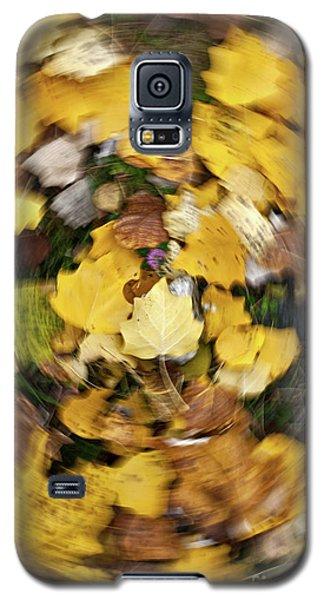 Whirlpool Of Autumn Galaxy S5 Case