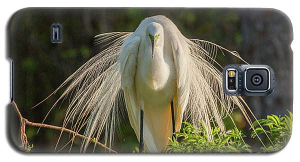 White Egret Galaxy S5 Case