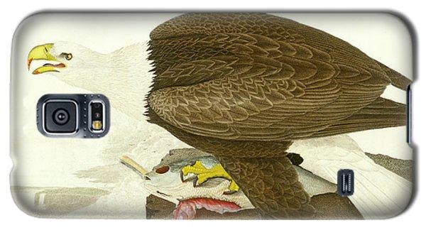 White-headed Eagle Galaxy S5 Case