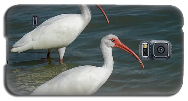 White Ibis Pair Galaxy S5 Case