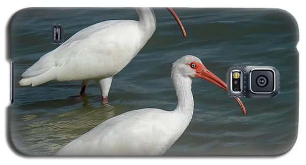 White Ibis Pair Galaxy S5 Case