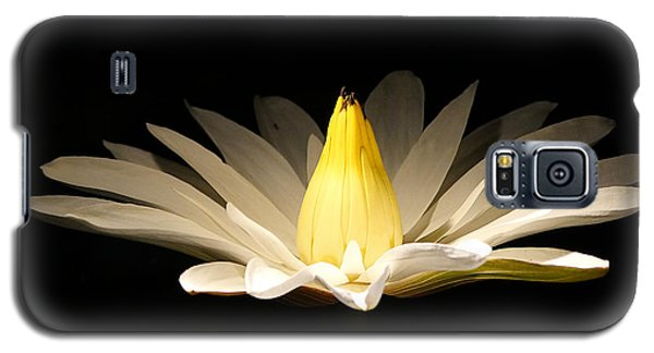 White Lily At Night Galaxy S5 Case