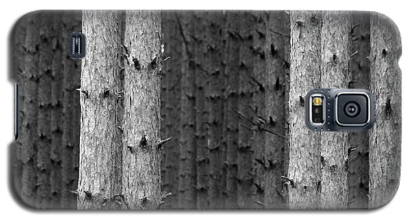 White Pines Black And White Galaxy S5 Case