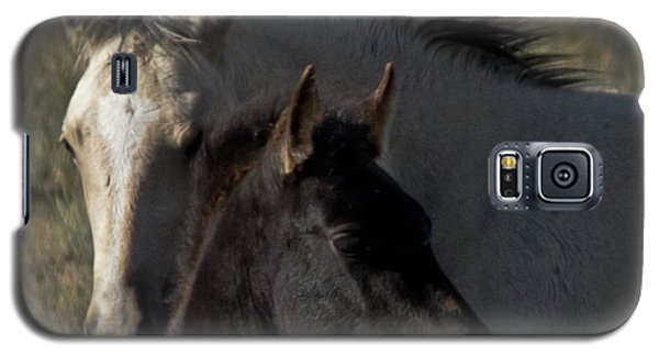 Wild Mustangs Of New Mexico 4 Galaxy S5 Case