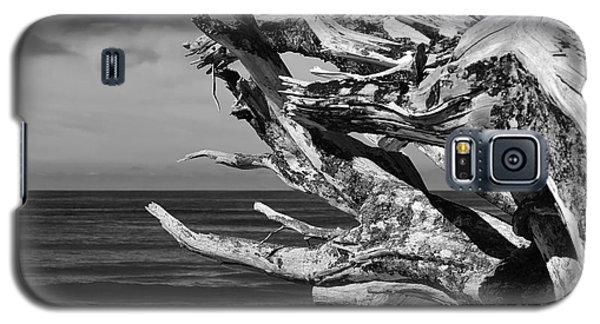 Wind Drift Galaxy S5 Case