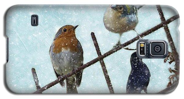 Winter Birds Galaxy S5 Case
