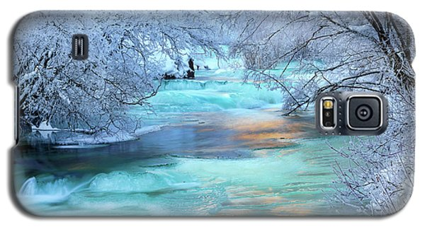 Winter Brilliance And Beauty Galaxy S5 Case