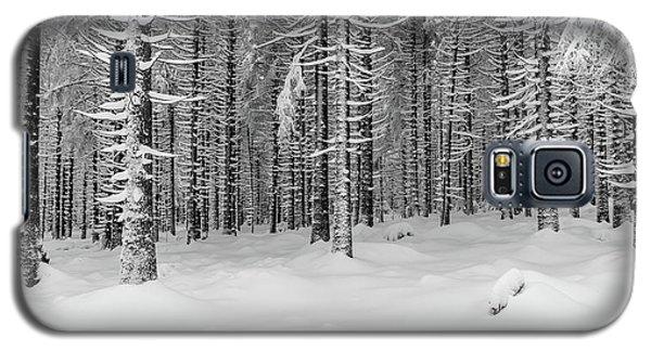 winter forest, Harz Galaxy S5 Case