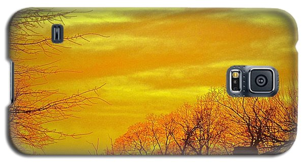 Winter Amber Galaxy S5 Case