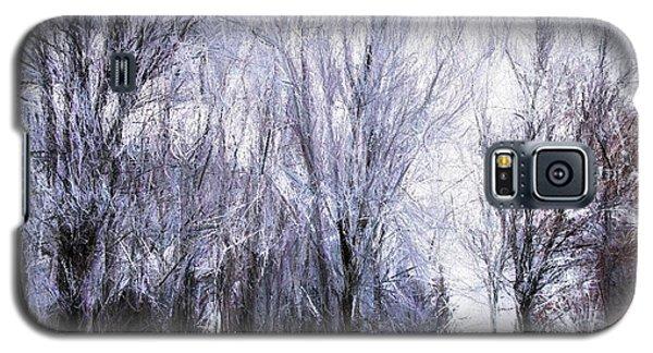 Winter Lace Galaxy S5 Case