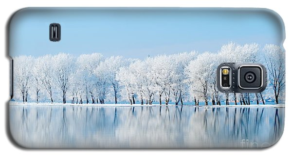 Icy Galaxy S5 Case - Winter Landscape by Aaltair