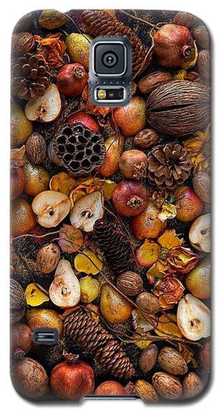 Winter Season Galaxy S5 Case