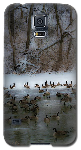 Winter Swim Galaxy S5 Case