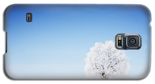 Icy Galaxy S5 Case - Winter Tree In A Field With Blue Sky by Dudarev Mikhail