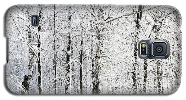 Icy Galaxy S5 Case - Winter Trees by Lenikovaleva