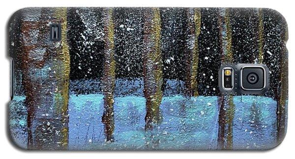 Wintry Scene I Galaxy S5 Case