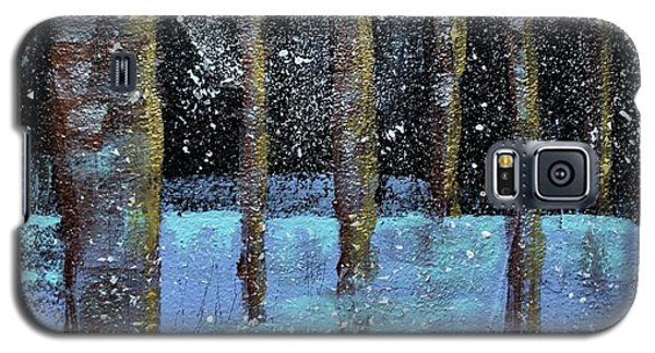 Wintry Scene I Galaxy S5 Case
