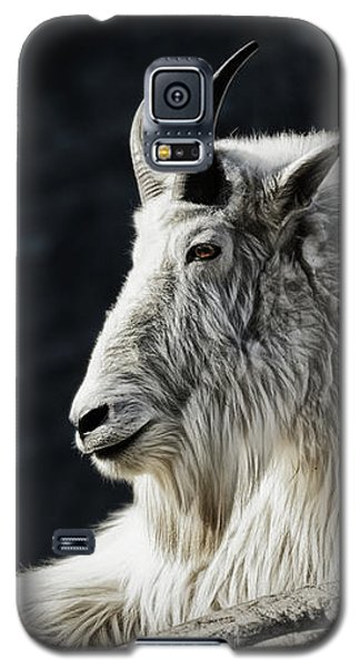 Wisdom From Up High Galaxy S5 Case