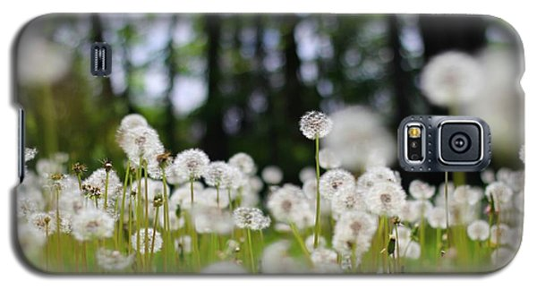 Wishes And Dreams Galaxy S5 Case