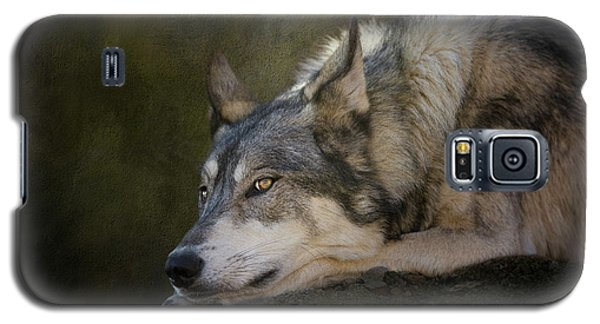 Wolf Watch Galaxy S5 Case