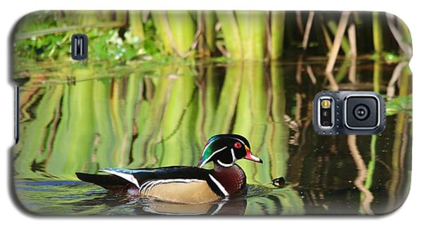Wood Duck Reflection 1 Galaxy S5 Case