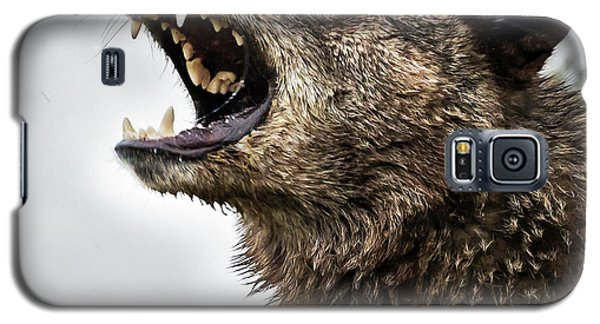Woof Wolf Galaxy S5 Case
