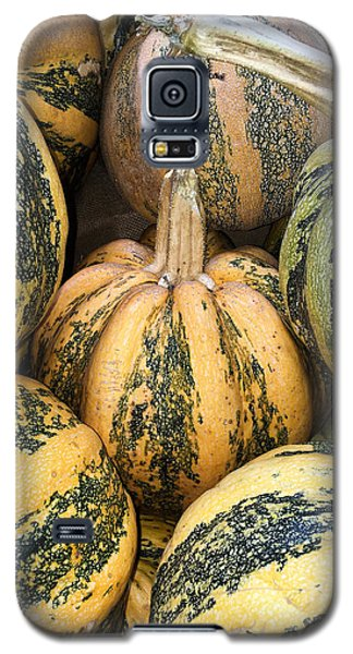 Yellow And Green Pumpkins Galaxy S5 Case