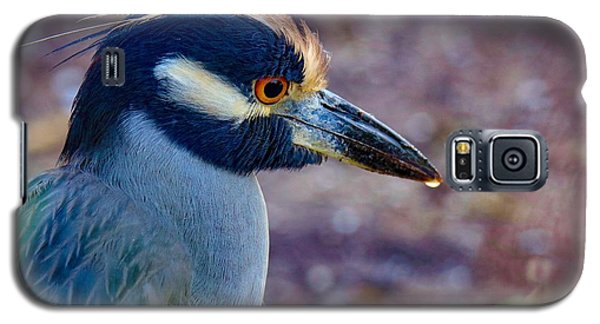 Yellow-crowned Night Heron Galaxy S5 Case