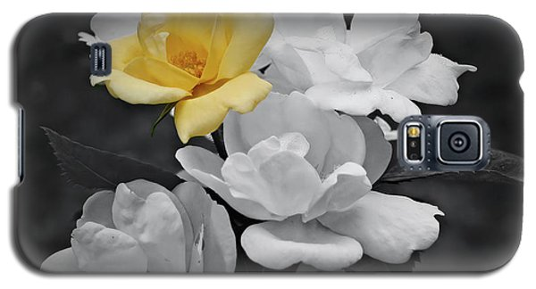 Yellow Rose Cluster Partial Color Galaxy S5 Case