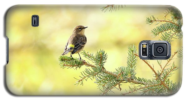 Yellow-rumped Warbler Galaxy S5 Case