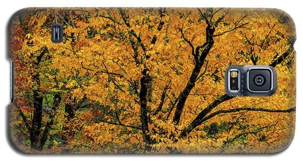 Yellow Tree Leaf Brilliance  Galaxy S5 Case