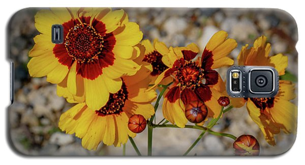 Yellow Wildflowers Galaxy S5 Case