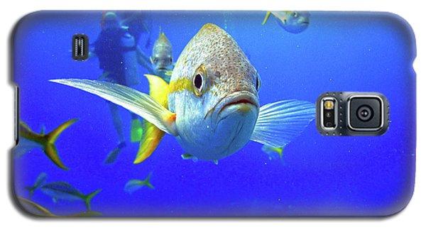 Yellowtails Galaxy S5 Case
