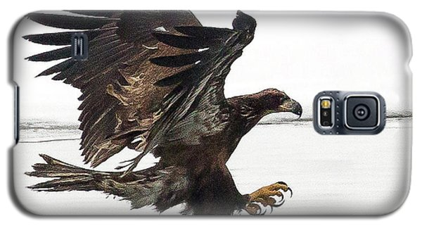Young Bald Eagle Galaxy S5 Case