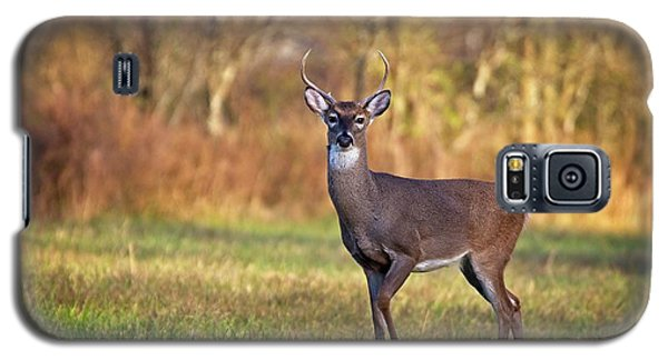 Young Buck Galaxy S5 Case