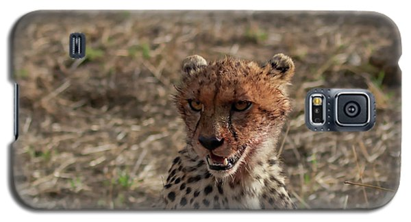 Young Cheetah Galaxy S5 Case