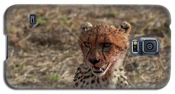 Young Cheetah Galaxy S5 Case