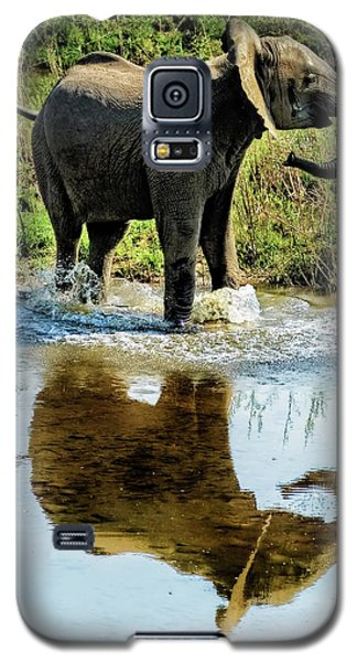 Young Elephant Playing In A Puddle Galaxy S5 Case