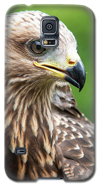 Young Kite Galaxy S5 Case