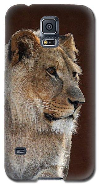 Young Male Lion Portrait Galaxy S5 Case