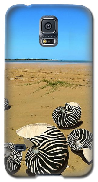 Zebra Nautilus Shells On The Beach  Galaxy S5 Case